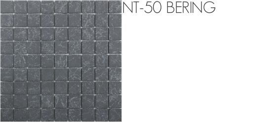 natura-nt-50